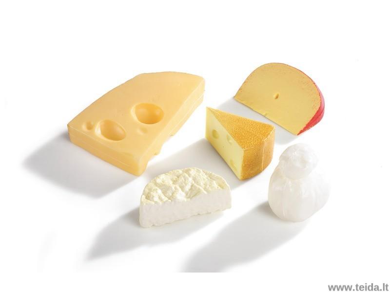 Vaikiškas sūrių rinkinys