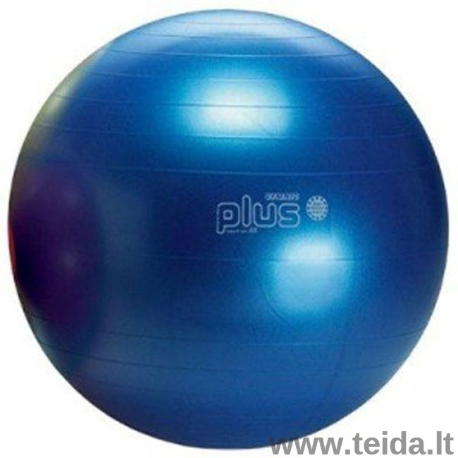 Gymnic Classic Plus kamuolys 65 mėlynas