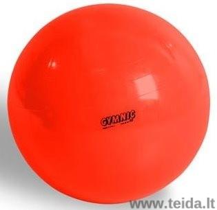 Physio Gymnic kamuolys 120 cm
