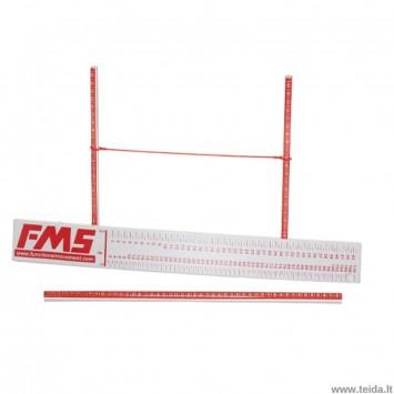 Funkcinių judesių vertinimo skalė FMS